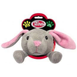PET NOVA Głowa królika -...